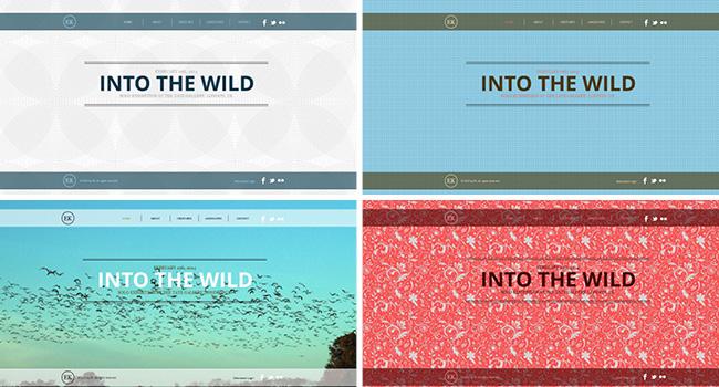 Vários sites, um só template.