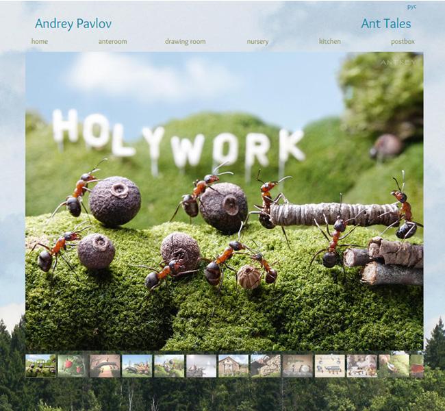 Andrey Pavlov – Fotógrafo de Formigas >>