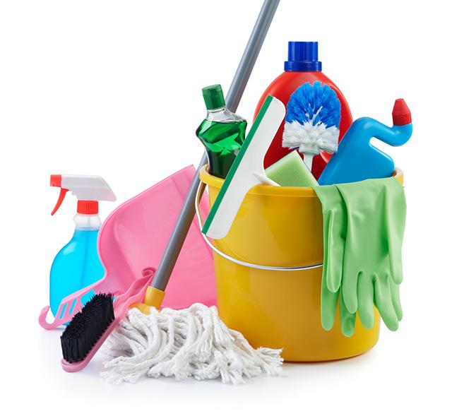 produtos de limpeza variados