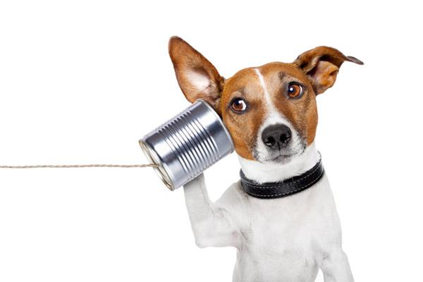 É muito importante ser honesto nas redes sociais, e pra isso é preciso escutar o que estão falando sobre você.
