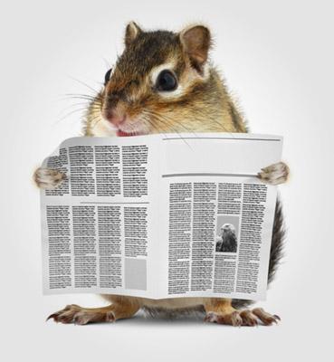 hamster lendo um jornal