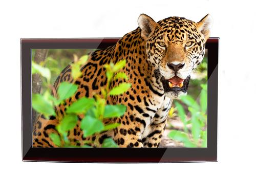 Imagens de alta qualidade fazem o seu site parecer profissional.
