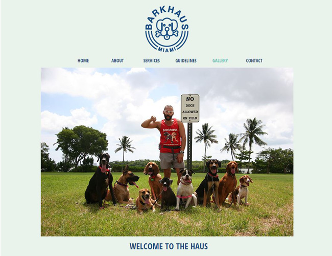 The Barkhaus - Passeio de Cães Personalizados