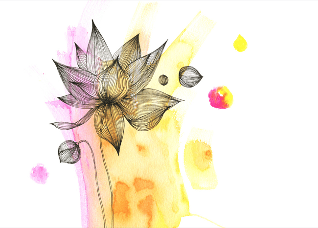 EM. Illustrations