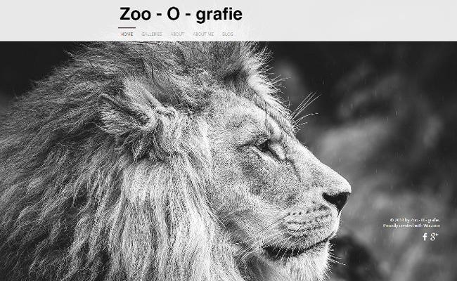Zoo – O – Grafie >>