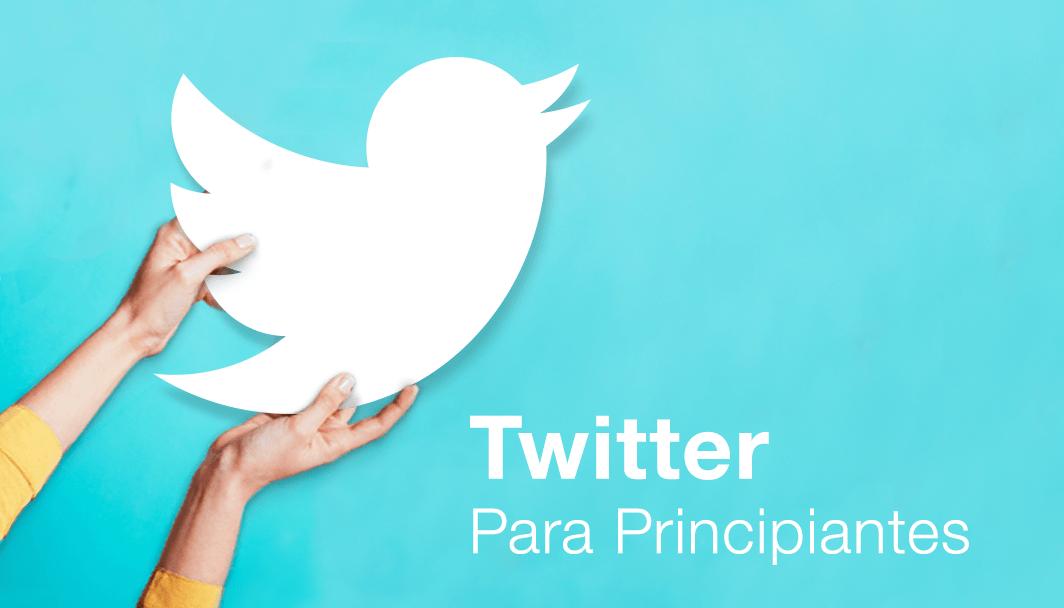 Twitter para Principiantes: O Guia Completo