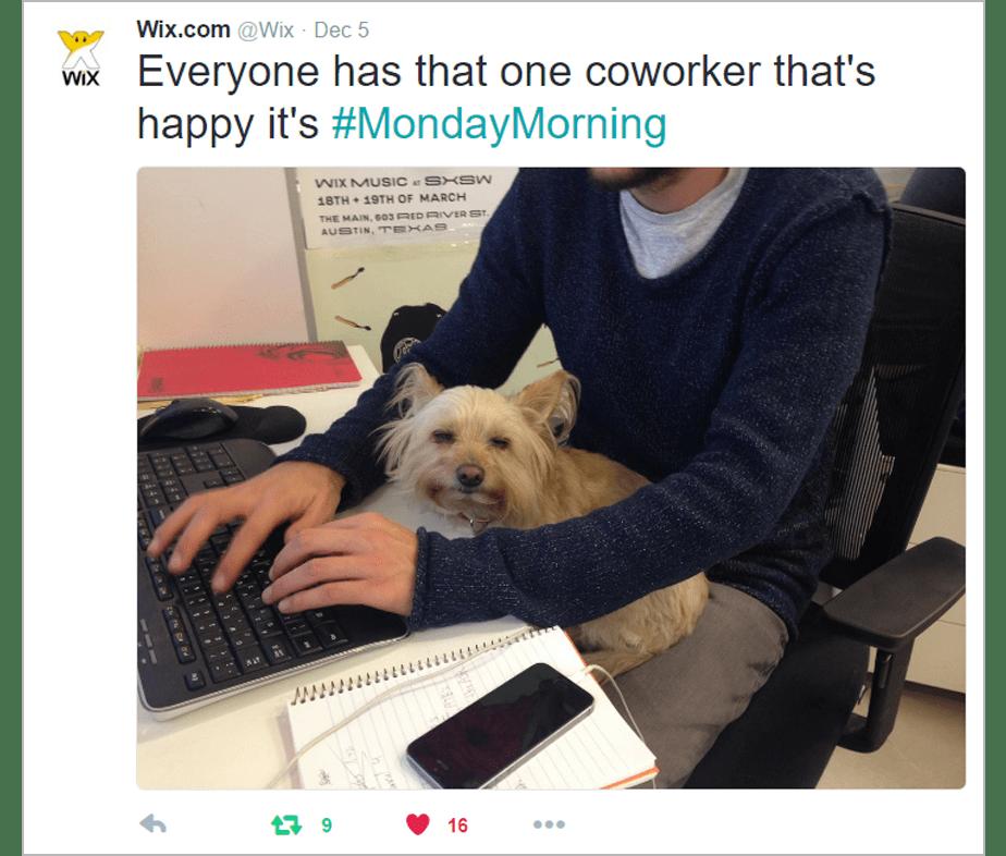 Como as pessoas interagem com as hashtags?