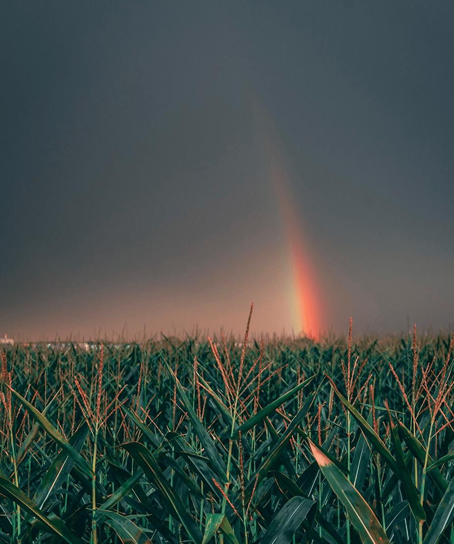 Fotografar Contando Histórias: Ajustes